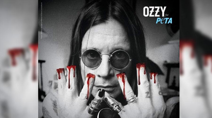 Ozzy Osbourne faz campanha contra mutilação de gatos