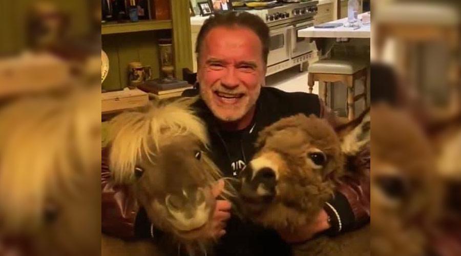 Arnold Schwarzenegger está autoisolado e aconselha as pessoas a ficarem em casa