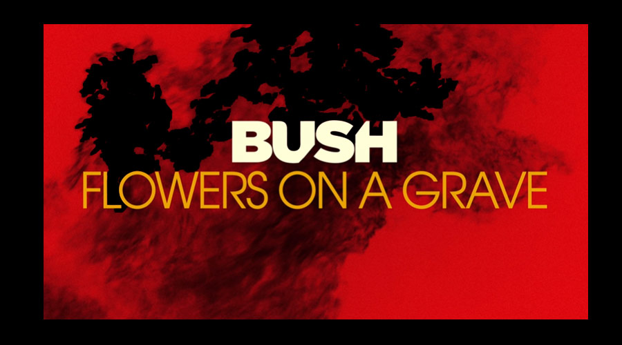 "Bush anuncia novo álbum! Ouça o 1º single, ""Flowers on a Grave"""